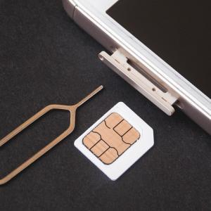 一時帰国 通信手段が必要ならプリペイドSIM。購入、設定と使用方法