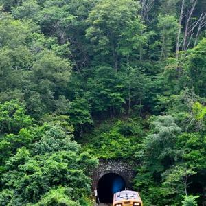 中日の三陸鉄道撮影行  その2  好ましいトンネルが