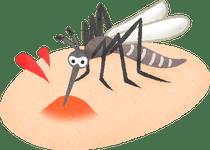 """この時期の""""蚊""""には、ご注意を!!"""
