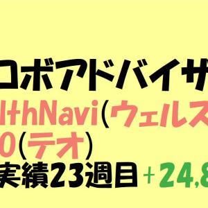 【ロボアドバイザー】WealthNavi(ウェルスナビ)・THEO(テオ)運用実績 23週目+24,869円