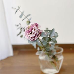 部屋を片付けたければ花を買うべし、は案外有効かもしれない。
