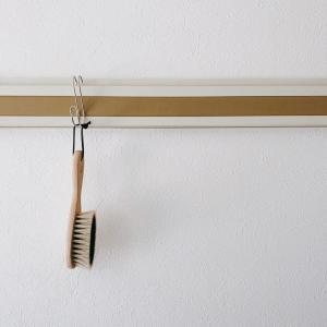 家中のものを吊るしたい欲求がすごい。コロナと虫対策。