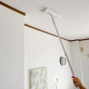 天井をクイックルワイパーで拭き掃除すると空気が光る気がする。