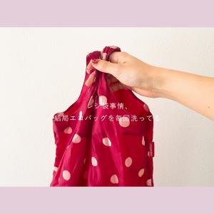 蓋を開けてみれば。私:エコバッグを毎回洗う。夫:毎回ビニール袋を買う。生ゴミ処理袋もそれでうまく回ってる。