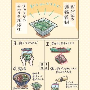 【常備食材リレー】サッパリ!夏のきゅうりの千切り浅漬け