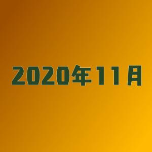 【空想書斎の3年目】書斎の神様がようやく登場【2020年11月】