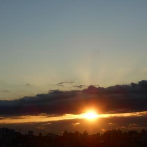 11月20日の朝陽