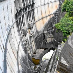 第1262回 川治ダムでコイにえさやり の巻