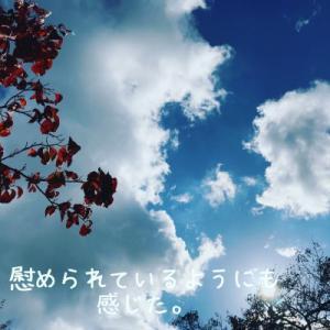 【 中学聖日記_妄想 】#123. 子から父へ・・・*