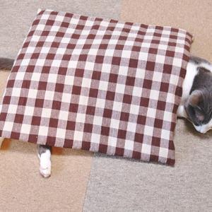 マロンの寝正月