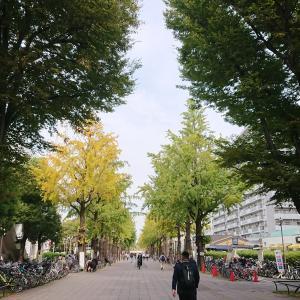 【3連休】11月追加ご予約可能日