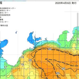 七里御浜 黒潮急接近中❗