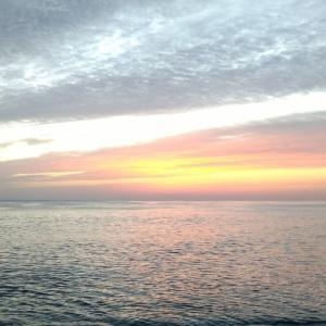 七里御浜 浜を見極めるとナブラに遭遇出来るはず❗