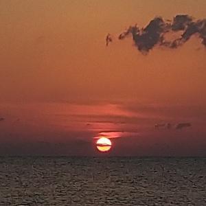 七里御浜 東寄りの風でベイトは確認出来ず❢