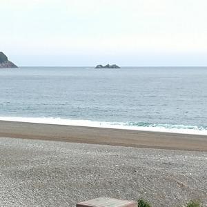 七里御浜 久しぶりに ヒラ来た❗