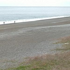 七里御浜 サワラにもて遊ばれる❢