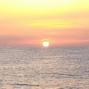 七里御浜 春の海になって来た❗