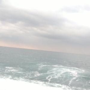 七里御浜 釣って見てワカッタ 磯も浜も同じパターンなヒラ❗