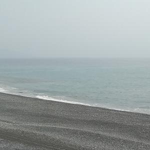 七里御浜 ワカナが入って来た❗