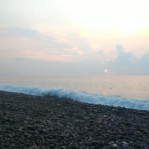 七里御浜 ヒラスズキはまだイタ❗