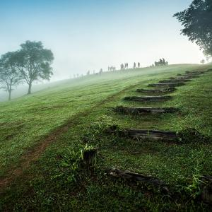 隈研吾:コロナと建築都市-箱から自然へ-自由を取り戻せ