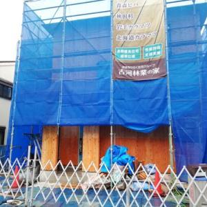 古川林業 建て方完了HousingJapan