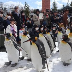 【旭山動物園】動物たちを見ると癒されます