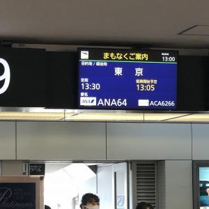 【ANA】64便 B767-300ER 新千歳✈️羽田 搭乗記