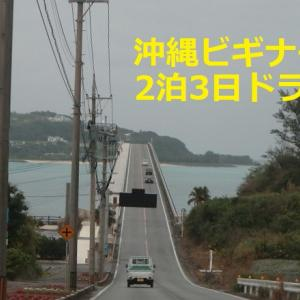 沖縄ビギナーの2泊3日ドライブ 西海岸~やんばる北部と伊計島
