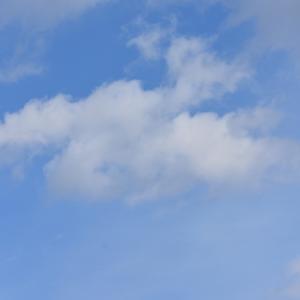 【ロボアド】楽ラップ開始29カ月の運用成績