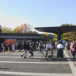 東京立川の昭和記念公園を走る