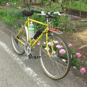 自転車 気楽に乗れるように なりました