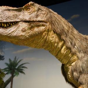 ミュージアムパーク 茨城県自然博物館で動く恐竜を見てきたよ!