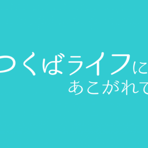 喜作(㐂作 きさく)でお弁当をテイクアウト!土浦で本格的なあんこう・ふぐ料理が楽しめる割烹料理屋さんです!