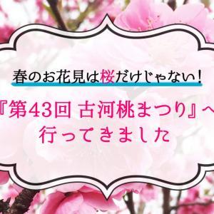 春のお花見は桜だけじゃない!『第43回 古河桃まつり』古河公方公園(古河総合公園)へ行ってきました
