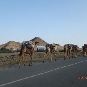 エチオピア ダナキル砂漠キャンプ地へ
