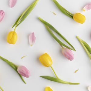 春分の日目前のサイン