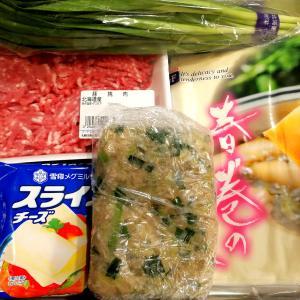 【おうちご飯】餃子の残り具DEチーズin春巻