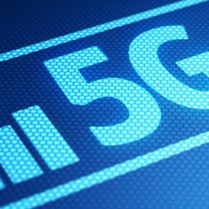 海外では規制も!?5Gの電波で「トリ」が大量死!か?