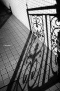 「影」の写真