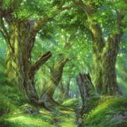 「世界樹の迷宮」エトリアに集いし冒険者達