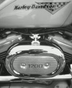 クルマ・バイクの写真