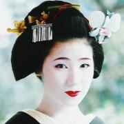 舞妓や芸妓に花街‥京都花柳界の話題