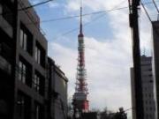 東京の情報もりだくさん!