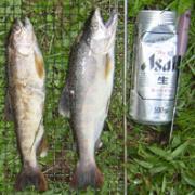 道志村でキャンプや釣りを楽しんでるかた