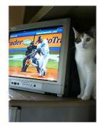 [ MLB ] ヤンキースとレッドソックス