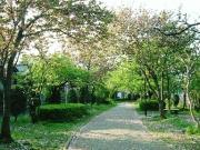 武蔵浦和 てくてく街歩き♪