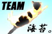 海苔柄猫!