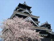 熊本市(熊本県県庁所在地)