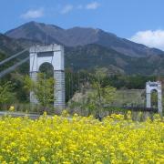 秦野市(神奈川県)